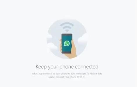 Coba WhatsApp di Laptop untuk Video Conference